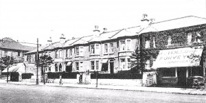 Hayesfield Terrace - cropped